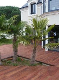 terrasses design