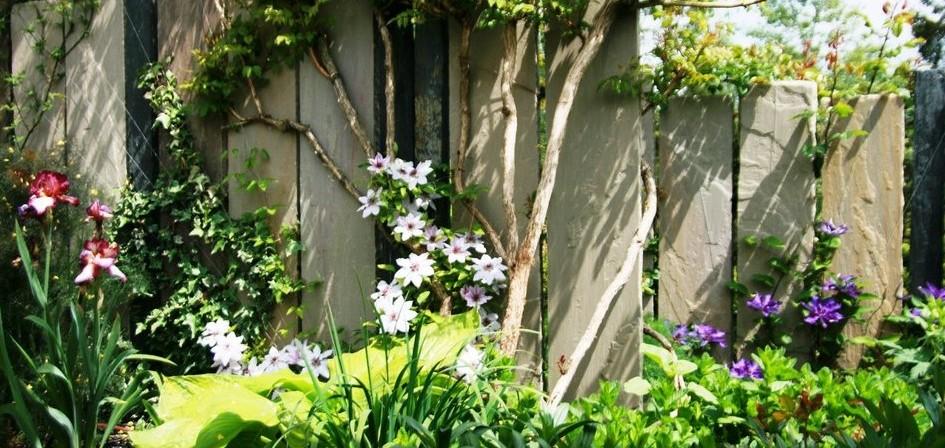 support plantes grimpantes paysagiste angers. Black Bedroom Furniture Sets. Home Design Ideas